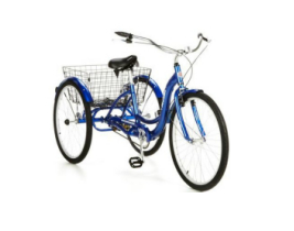 Best Tricycles For Adults For Sale Top 10 Picks